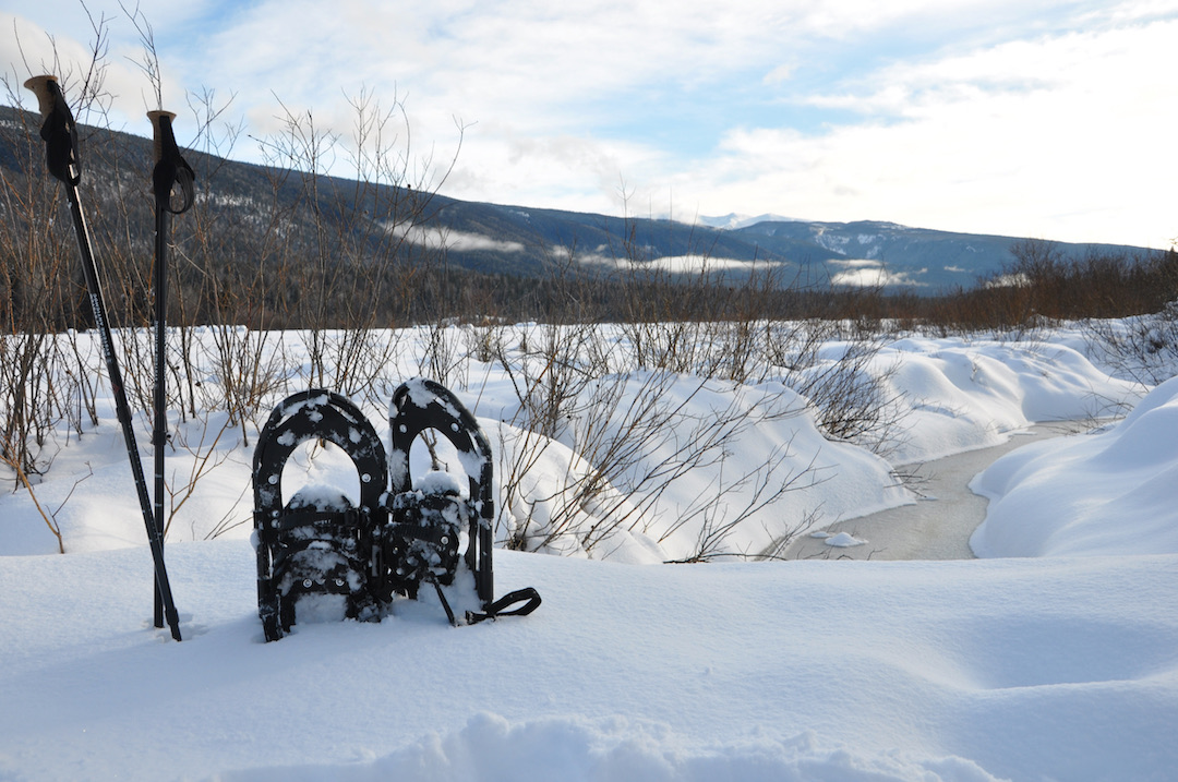 snowshoes & poles in the snowbank