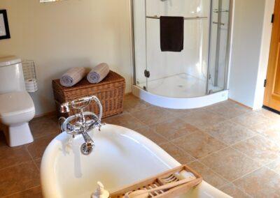 Bath Bear tub and shower