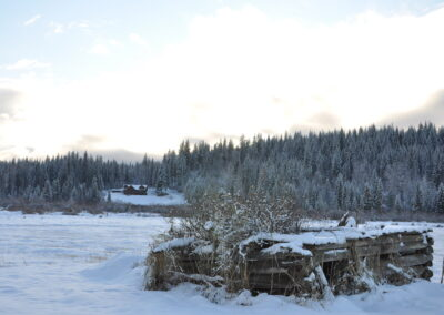 Winter on the ranch